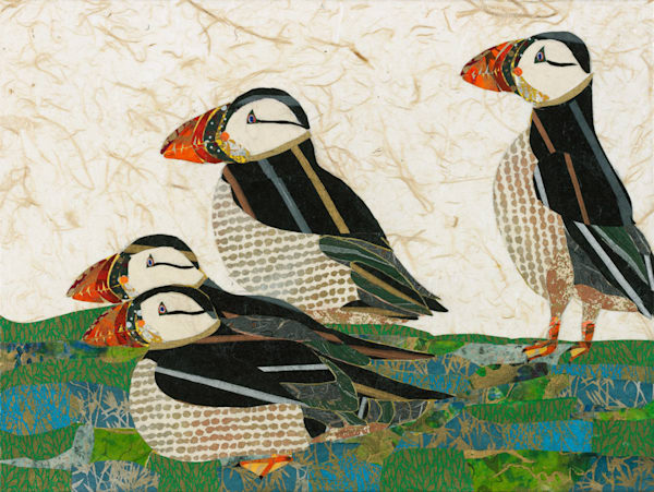 Puffins by Brian Orr