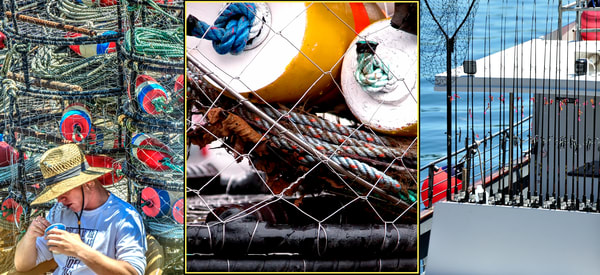 Newport Fishing Collage