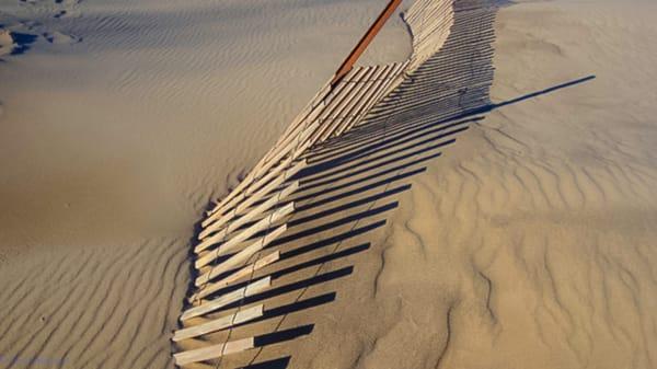 Winter Snow Fence Warren Dunes