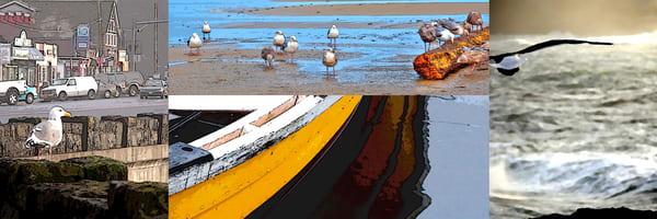 Depoe Bay Collage