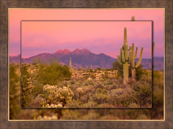 Four Peaks Sunset Pink H 3D Bronze Wide