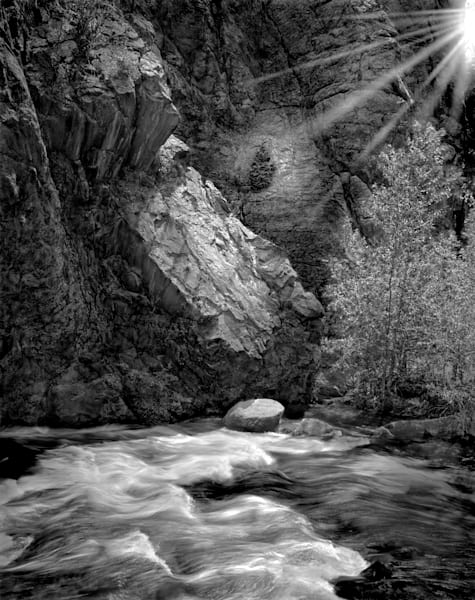 The Serenity of Water Collection - bw | Burning Bush, the North Fork of the Big Thompson. Fine art black and white photograph by David Zlotky