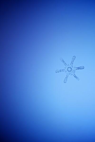 Snowflake Series II