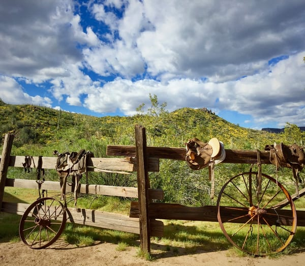 Arizona Saddle Photography Art | Lisa Kiene Photography