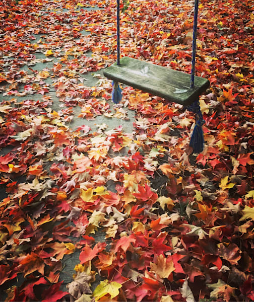 Swinging Through Fall Photography Art | Lisa Kiene Photography