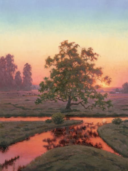 Amber Sunset Glow Art | Terry Sauve Fine Art