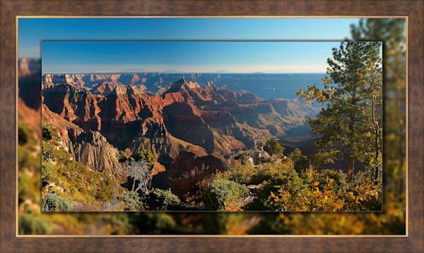 Grand Canyon North Rim 3D Bronze Wide