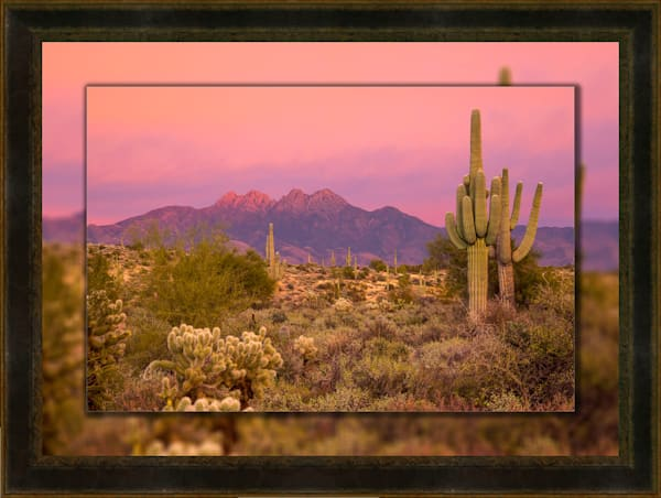 Four Peaks Sunset Pink H 3D Leather