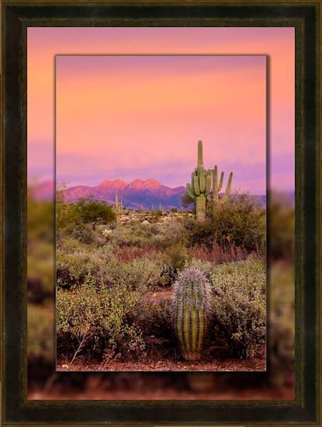 Four Peaks Sunset Pink V  3D Leather