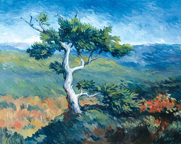 Tree On A Hill Art | Digital Arts Studio / Fine Art Marketplace
