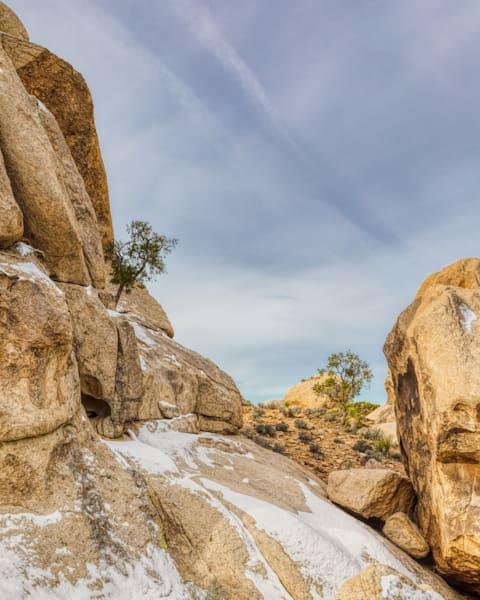 On The Borderline   Joshua Tree National Park Photography Art | Will Nourse Photography