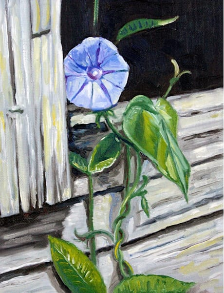 Morning Glory Fine Art Print by American Artist Hilary J England