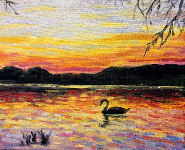 Lone swan at sunset fine art print