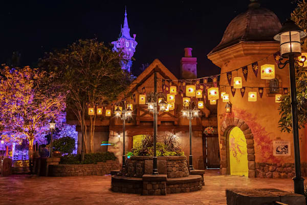 Tangled Magic Kingdom - Disney Pics | William Drew