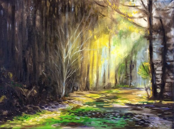 Quiet woods fine art print by Hilary J. England