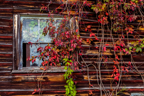 Rustic Barn 2 Photography Art | Gale Ensign Photography