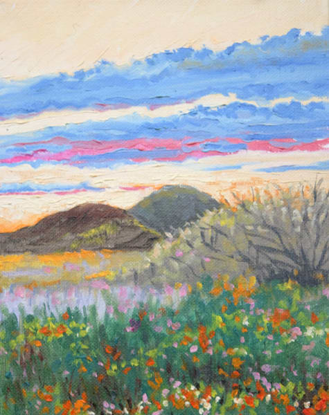 Late afternoon in the Southwest fine art print