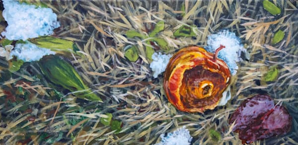 The old apple after the thaw fine art print