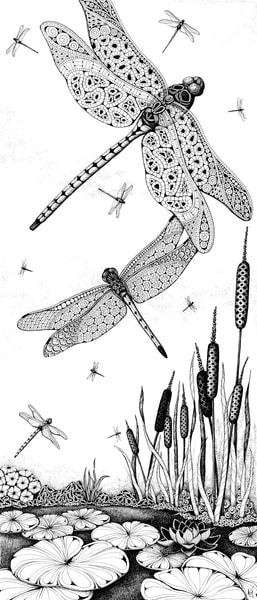 Dragonfly Dance
