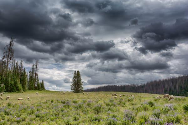 Unitah Storm Gathering Photography Art | Nathan Larson Photography