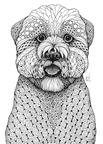 Wheaton Terrier- softcoat
