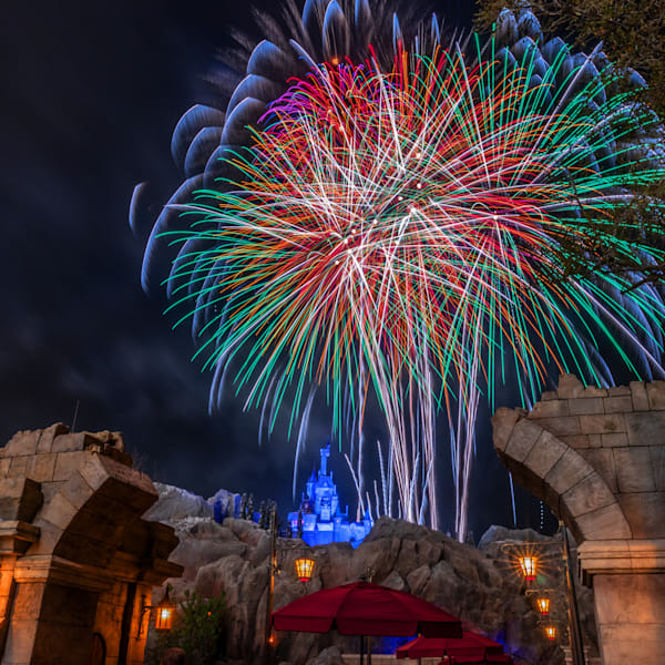 Beast's Happily Ever After 3 - Magic Kingdom Art | William Drew Photography