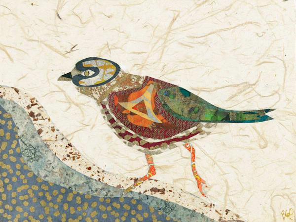 Bird Art | capeanngiclee