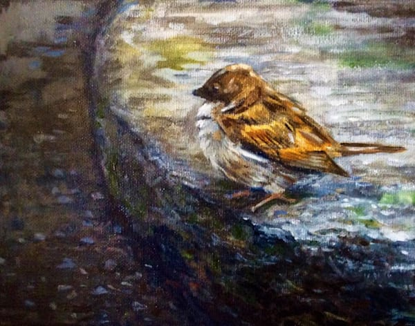 Sparrow on the garden stone Fine Art Open Edition Print