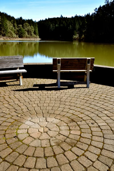 Benches On Tilicum Lake Single