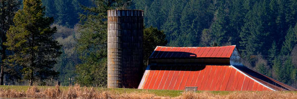 Red Roof Barn and Silo