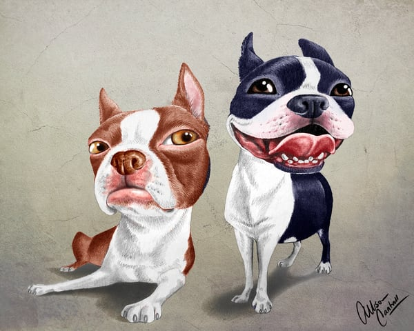 Sour and Sweet - pair of Bostons available on paper or canvas