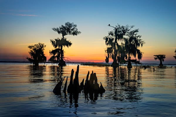 7616 Blue Cypress Lake Art | Cunningham Gallery