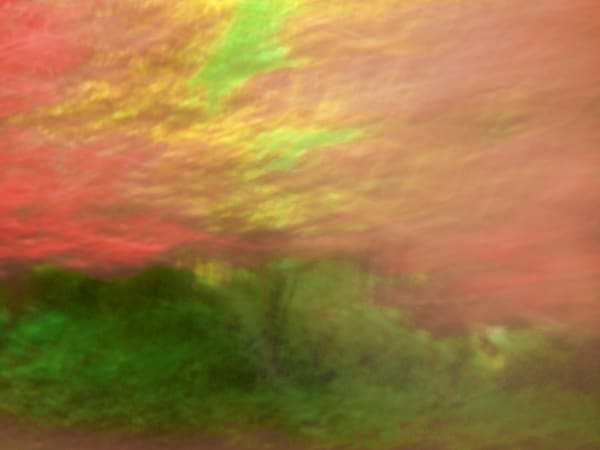 Abstract View of Fall