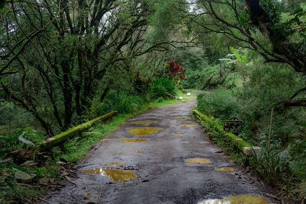 Haiku Road 001