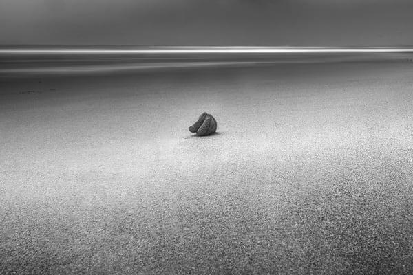 A9 Bournemouth beach shell