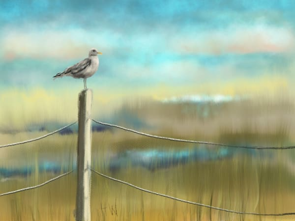 Beach Grass digital painting by Holly Whiting