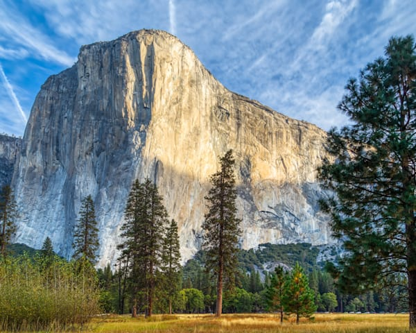 Morning At El Cap  Yosemite National Park Photography Art | Will Nourse Photography