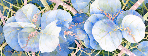 A print on  fine-art paper by watercolor artist Sandra Galloway of blue-colored sea grapes.