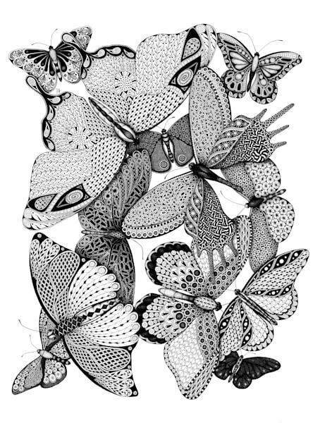 Melange des Papillons