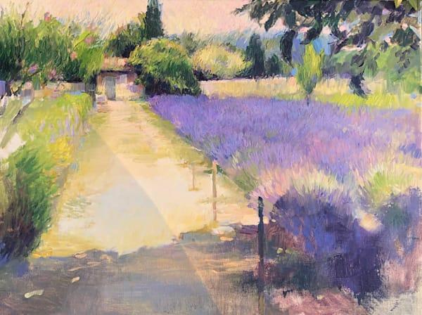 Van Gogh's Hospital Garden in St Remy