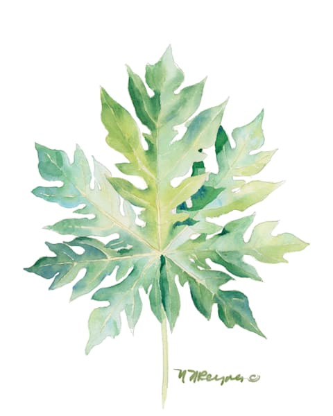 Single Leaf12 Art | Nancy Reyna Fine Art