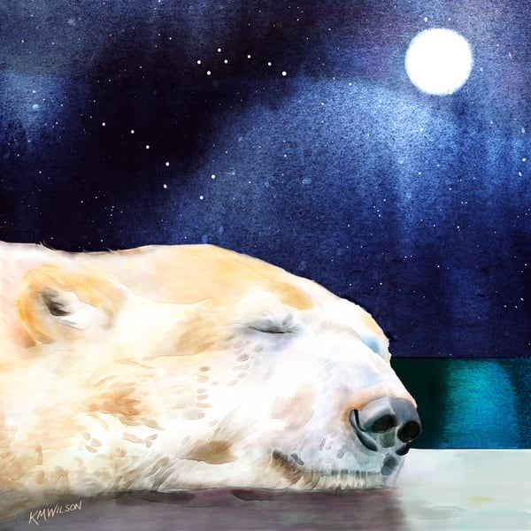 Ursa Sleeping Art | Pendragon Art Studios