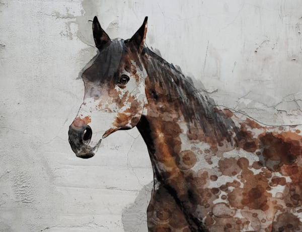 Horse art and paintings for sale by Irena Orlov. Oversized rustic farmhouse horse painting print