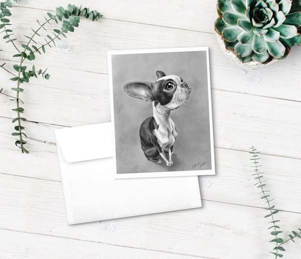 Fine art note cards - Boston Terrier greeting cards from BunnyPigs