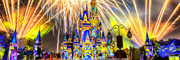 Happily Ever After 42 - Disney Wall Murals | William Drew