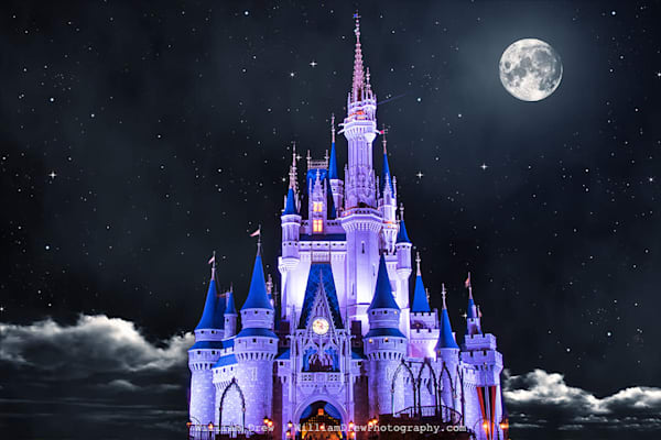 Cinderella White Moon - Disney Wall Mural | William Drew Photography