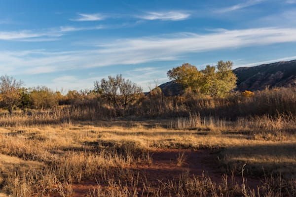 November Golden Hour At The Canyon Floor Photography Art | David N . Braun Photography