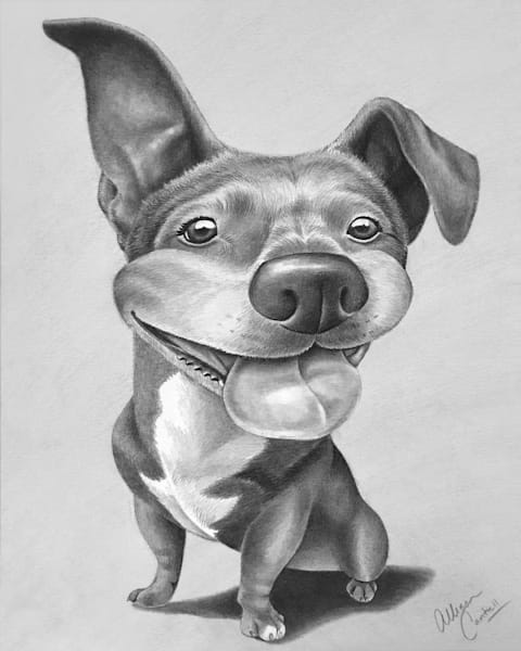 Canine caricatures in pencil