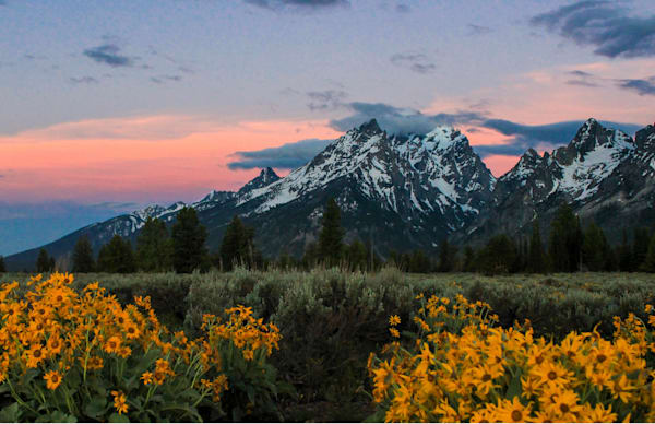 Grand Teton Blanketed Sunrise