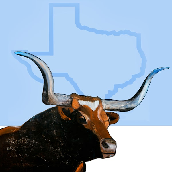 LONGHORN - TEXAS BACKGROUNG